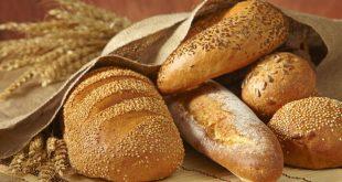 بهترین خمیر مایه نان