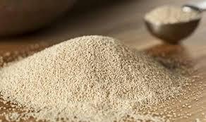 صادرات خمیر مایه مرغوب